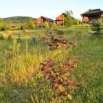 Domki na Wzgórzu Poręby w Solinie z zewnątrz, otoczenie